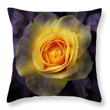 Transitional Rose Throw Pillow