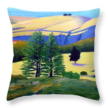 Transitions Throw Pillow by Gary Coleman