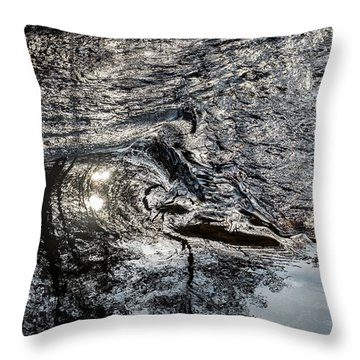 Transitions Throw Pillow