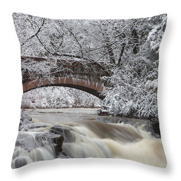 Transitions Throw Pillow by Mary Amerman