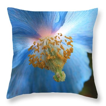 Translucent Blue Poppy Throw Pillow by Carol Groenen
