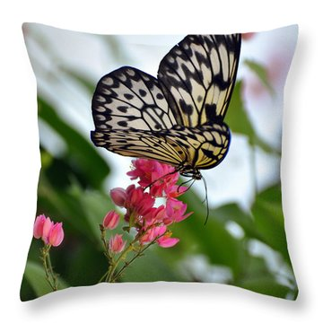 Translucent Butterfly Throw Pillow by Marty Koch