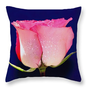 Translucent Rose Throw Pillow by Gary Dean Mercer Clark