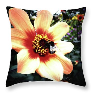 Translucent Wings Throw Pillow