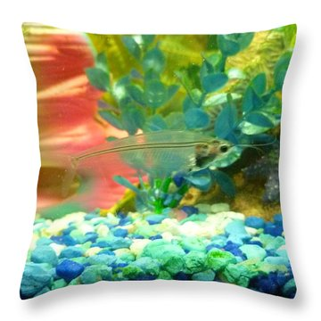 Transparent Catfish Throw Pillow