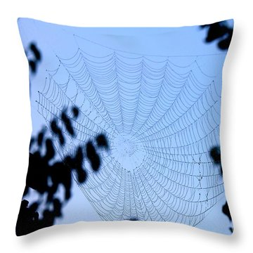 Transparent Web Throw Pillow
