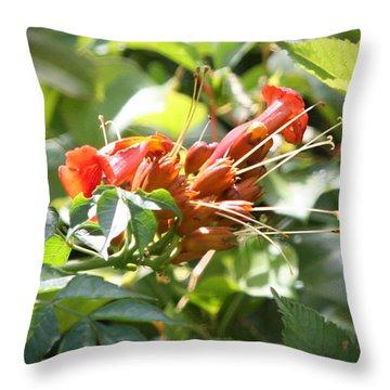 Tropical Trumpet Creeper Throw Pillow