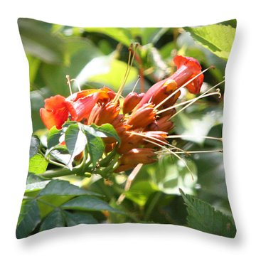 Tropical Trumpet Creeper Throw Pillow