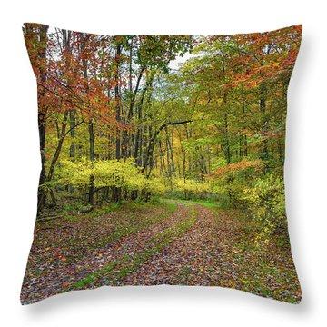 Travels Through Autumn Throw Pillow