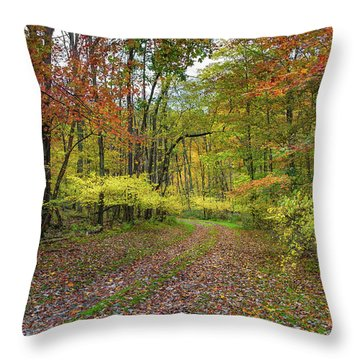 Travels Through Autumn Throw Pillow