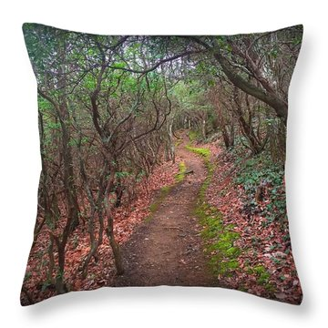 Tray Mountain Throw Pillow