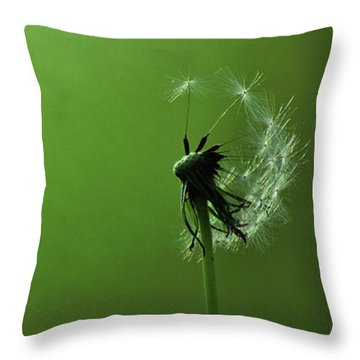 Tread Softly Throw Pillow by Rebecca Sherman
