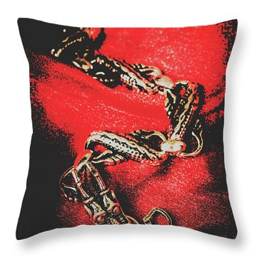 Treasures From The Asian Silk Road Throw Pillow