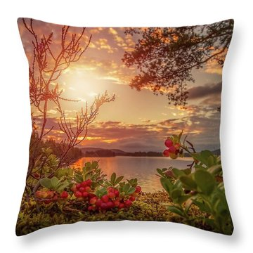 Treasures In Nature Throw Pillow by Rose-Marie Karlsen