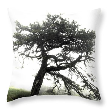 Throw Pillow featuring the photograph Tree by Alex Grichenko