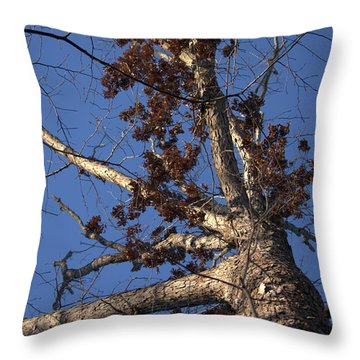 Tree And Branch Throw Pillow
