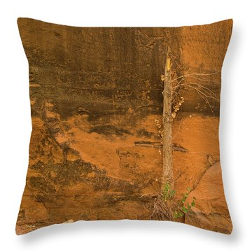 Tree And Sandstone Throw Pillow