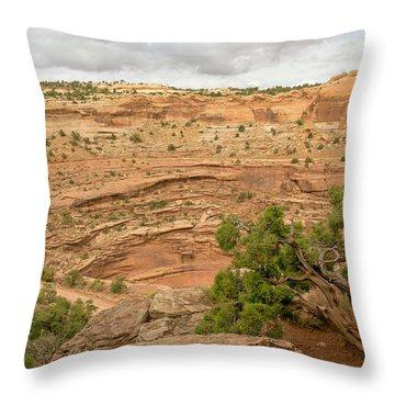 Tree And Shafer Trail Throw Pillow
