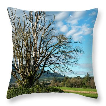 Tree And Sky Throw Pillow