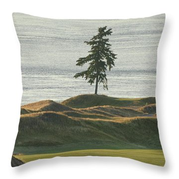 Tree At Chambers Bay Throw Pillow