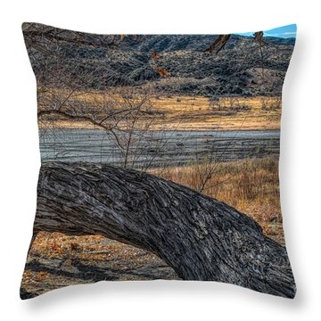 Tree At Elizabeth Lake Throw Pillow