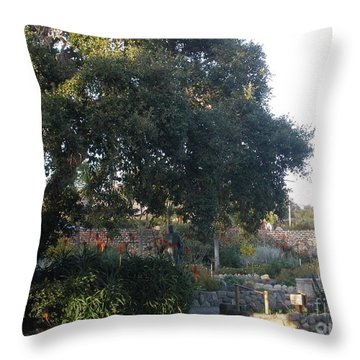 Tree At Mission Carmel Throw Pillow