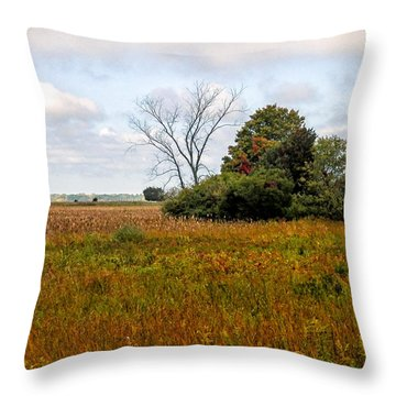Tree At Plum Island Throw Pillow