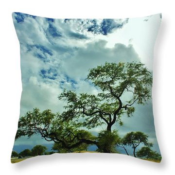 Tree Beside The Tracks Throw Pillow