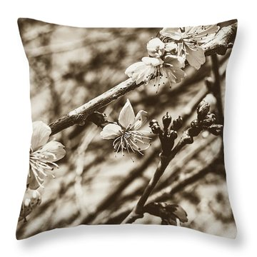 Throw Pillow featuring the photograph Tree Blossom A by Jacek Wojnarowski