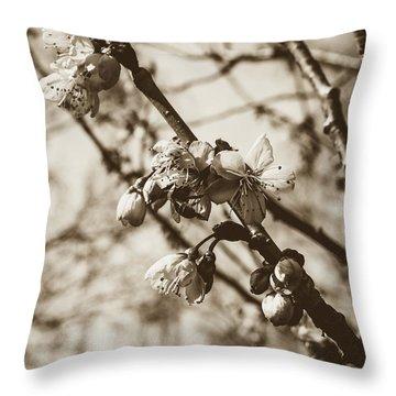 Throw Pillow featuring the photograph Tree Blossom B by Jacek Wojnarowski