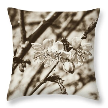 Throw Pillow featuring the photograph Tree Blossom C by Jacek Wojnarowski