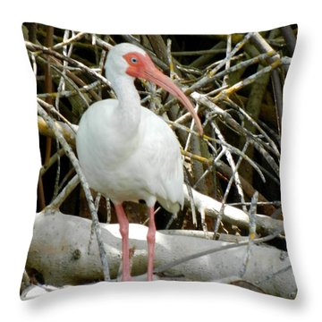 Tree Branch Throw Pillow