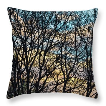 Tree Branches And Colorful Clouds Throw Pillow by James BO Insogna