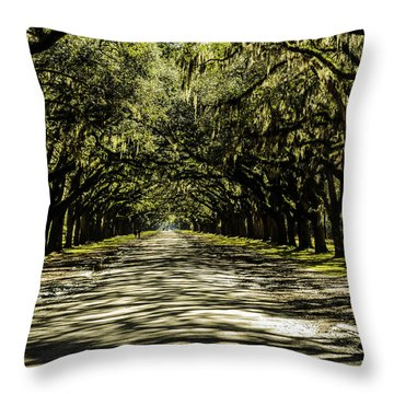 Tree Covered Approach Throw Pillow