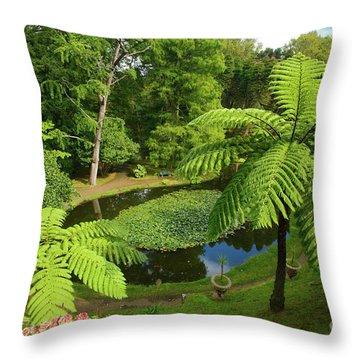 Tree Ferns Throw Pillow by Gaspar Avila