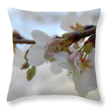 Dogwood Branch Pink Throw Pillow