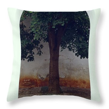 Tree Framed By Arch Oaxaca Mexico Throw Pillow
