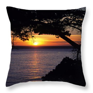 Tree Framing Seascape Sunset Throw Pillow by Ali ONeal - Printscapes