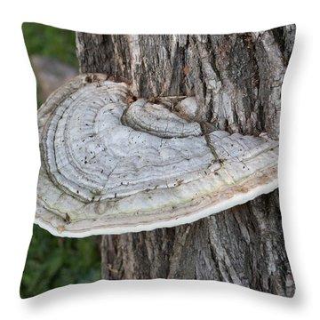 Tree Fungus Throw Pillow