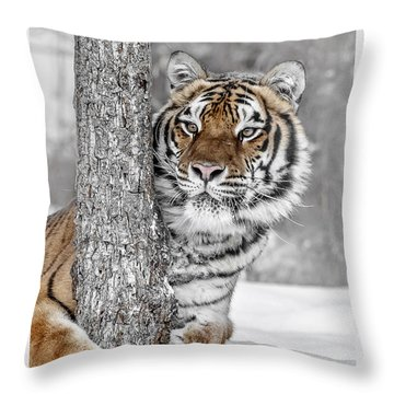 Tree Huggin Throw Pillow