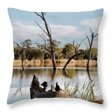 Throw Pillow featuring the photograph Tree Image by Douglas Barnard