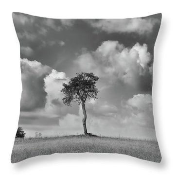 Throw Pillow featuring the photograph Tree In A Field by Guy Whiteley