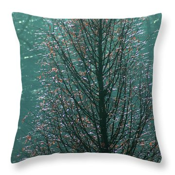 Tree In Autumn, With Red Leaves, Blue Background, Sunny Day Throw Pillow