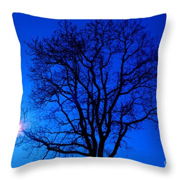 Tree In Blue Sky Throw Pillow by Silvia Ganora