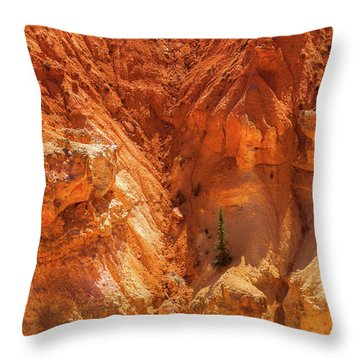 Tree In Bryce Throw Pillow