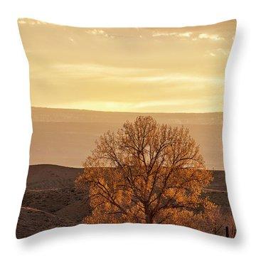 Tree In Desert At Sunset Throw Pillow
