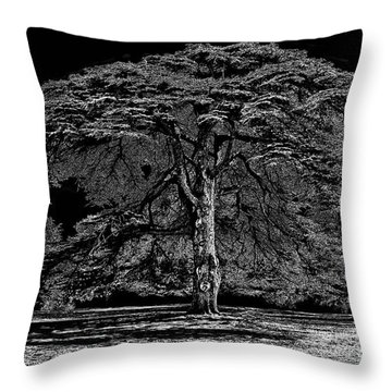 Tree In England Throw Pillow