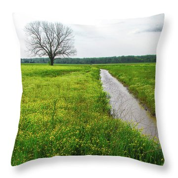 Tree In Field 2 Throw Pillow