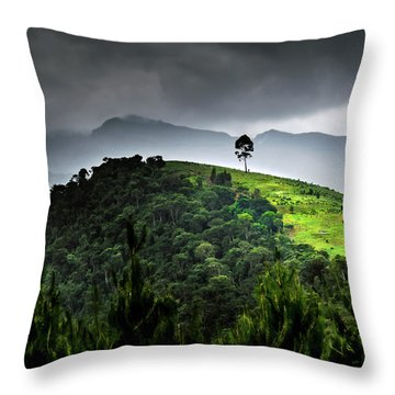 Tree In Kilimanjaro Throw Pillow