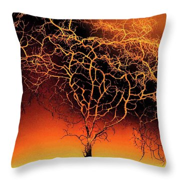 Tree In Light Throw Pillow